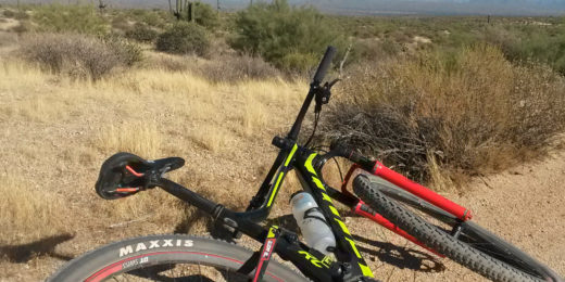 McDowell Mountain Regional Park in Fountain Hillls Arizona